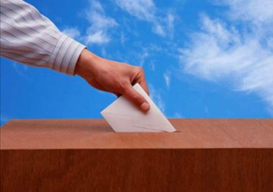 150 граждан выбрали участок для голосования через МФЦ Ленобласти