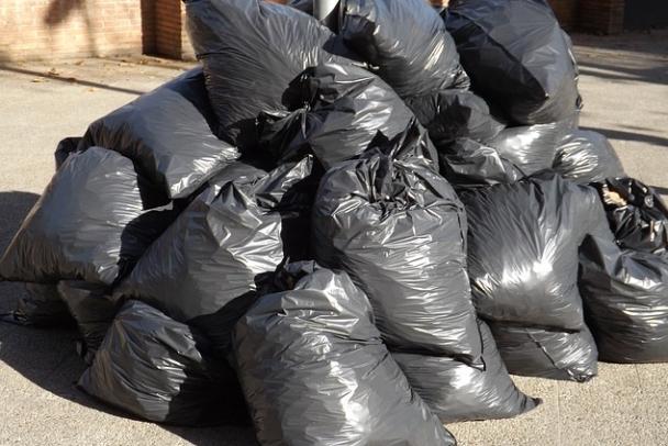Росcийские ученые предложили новый способ переработки отходов без вреда для экологии