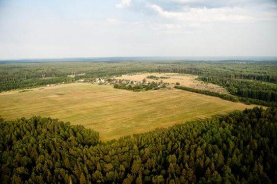 Предложения по вовлечению в оборот неиспользуемых сельхозземель будут разработаны к 1 мая