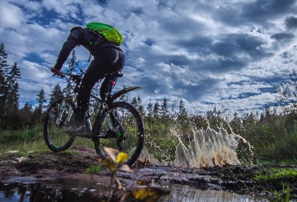 Любителей велопрогулок приглашают поделится своими маршрутами по Ленобласти