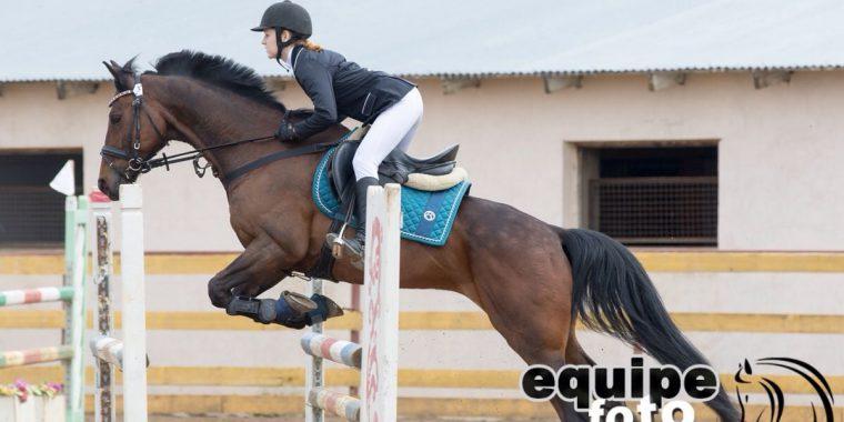 Очередная победа в конном спорте