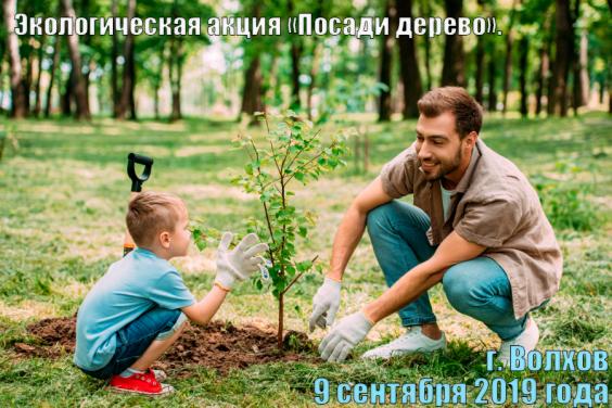 """Экологическая акция """"Посади дерево"""" в Волхове, 9 сентября"""