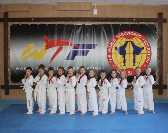 В Волхове начал работу новый спортивный клуб «Тхэквондо 47»