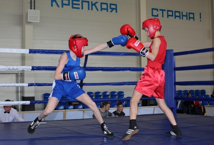 В Волхове пройдёт VII открытый турнир по боксу