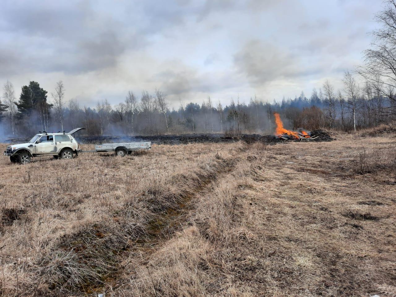 Профилактика лесных и ландшафтных пожаров