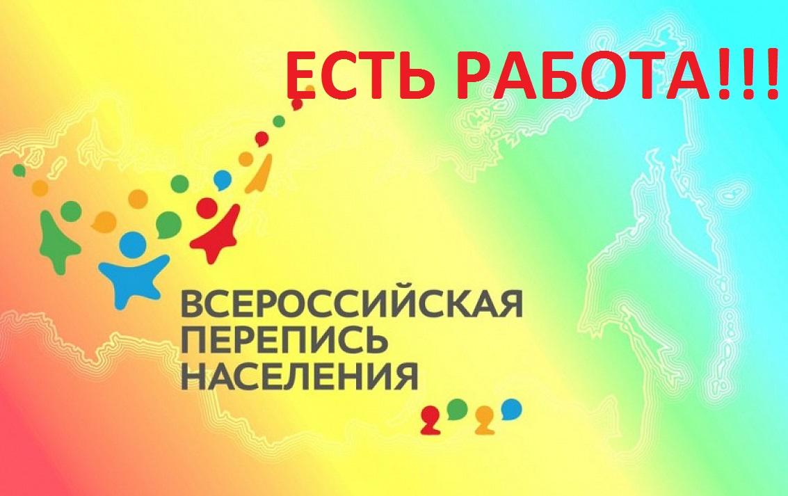 Волонтеры переписи