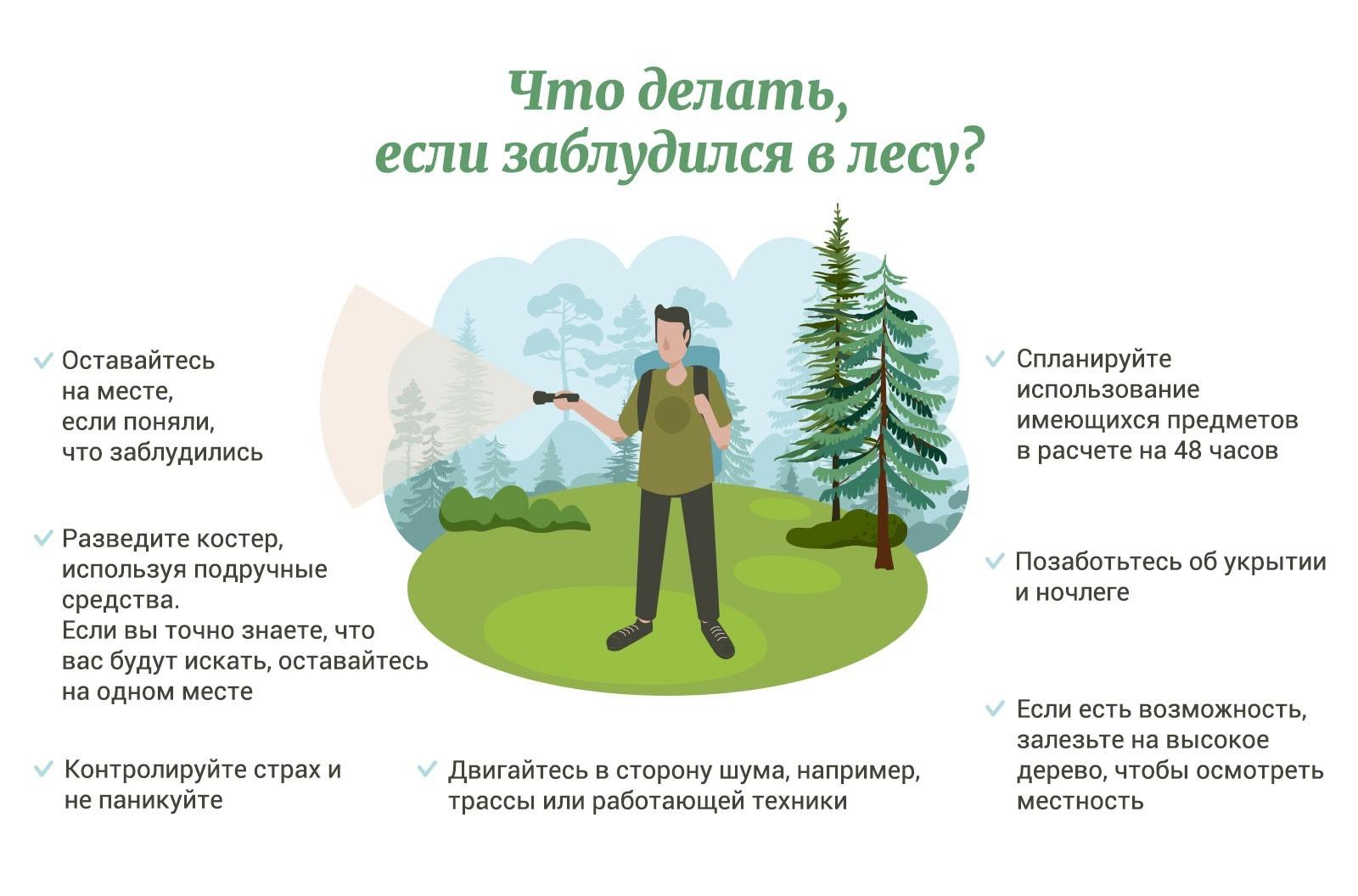 Поиски пропавших в лесах Ленинградской области