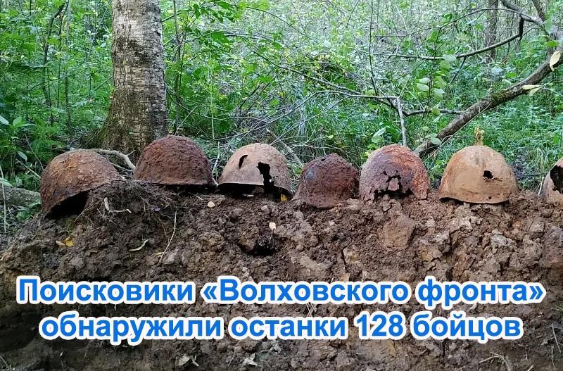 Поисковики «Волховского фронта» обнаружили останки 128 бойцов
