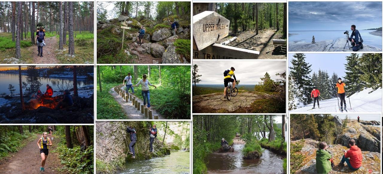В Ленинградской области займутся обустройством шести туристических троп