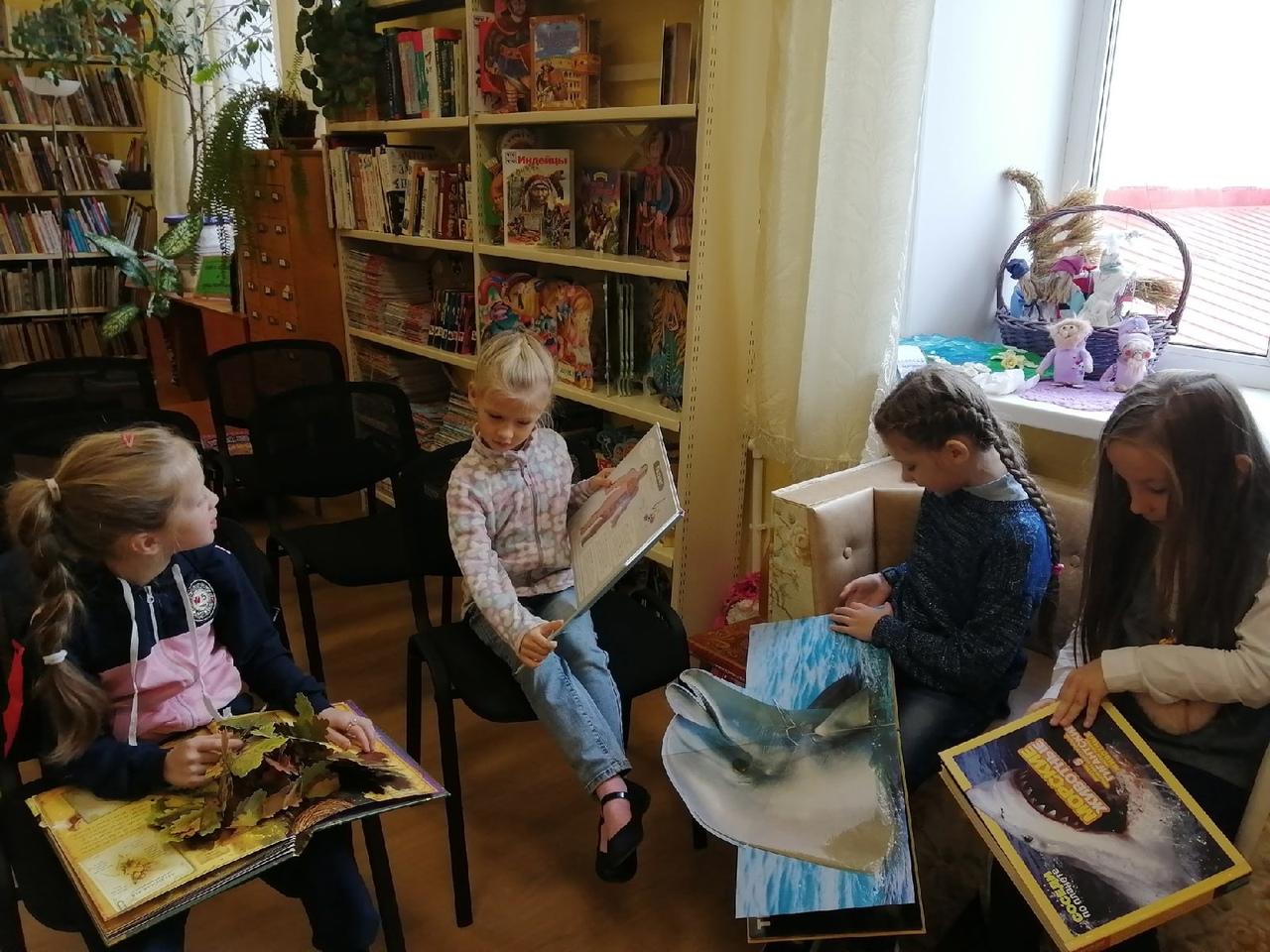 Библиотека — волшебное место
