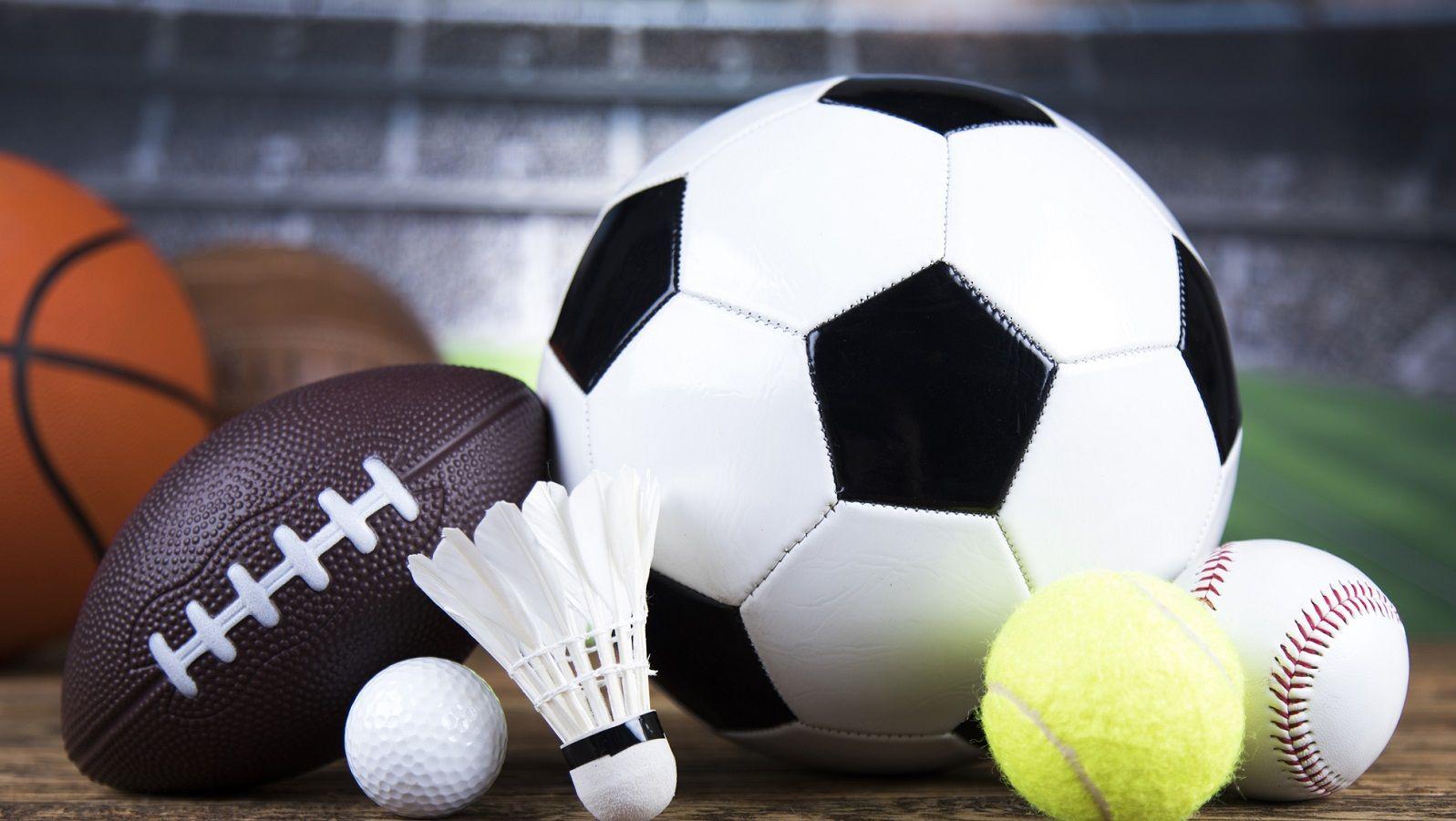 Жители Ленобласти могут бесплатно заниматься любимым спортом